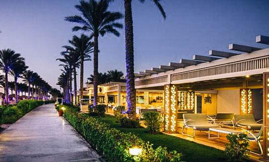 пальмы у отеля Rixos Sharm El Sheikh 5*