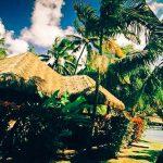 бунгало под пальмами