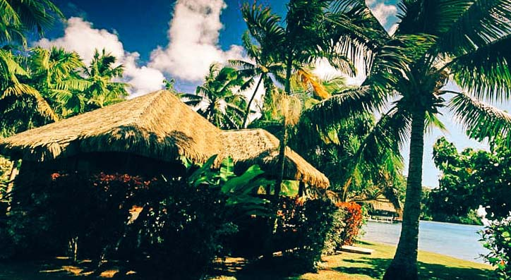 бунгала под палмите