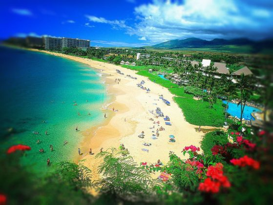 bờ biển, về. Maui