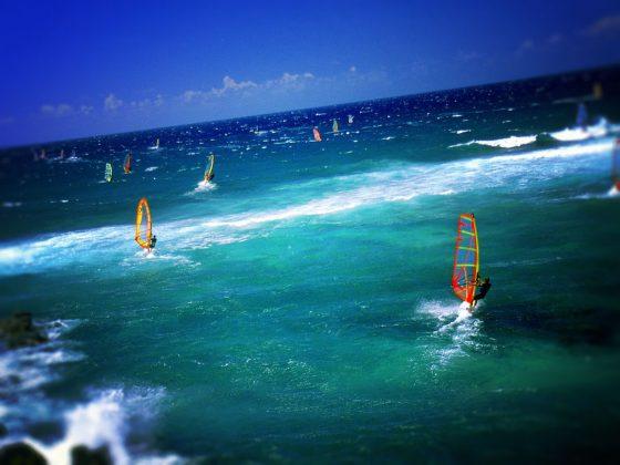 Lướt ván buồm trên. Maui