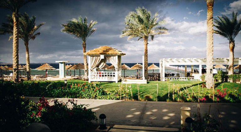 palmetræer og en havepavillon