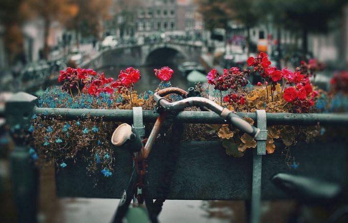 Bike unde Amsterdam street