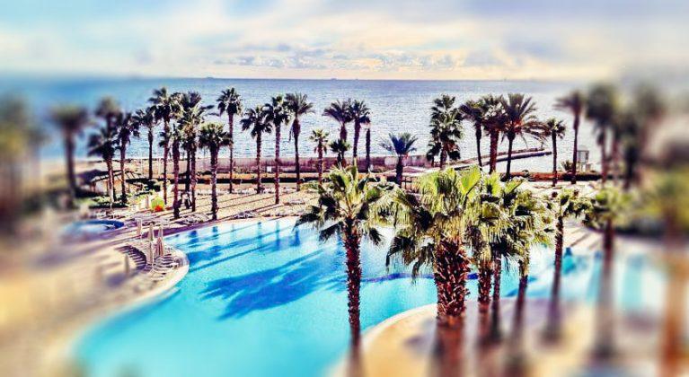 açık yüzme havuzu ve palmiye ağaçları